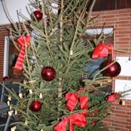 Weihnachtsbaum schmücken am 01.12.2018